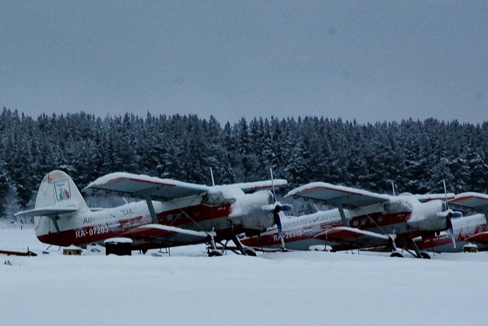 Самолеты Ан-2 авиакомпании Авиалесоохрана