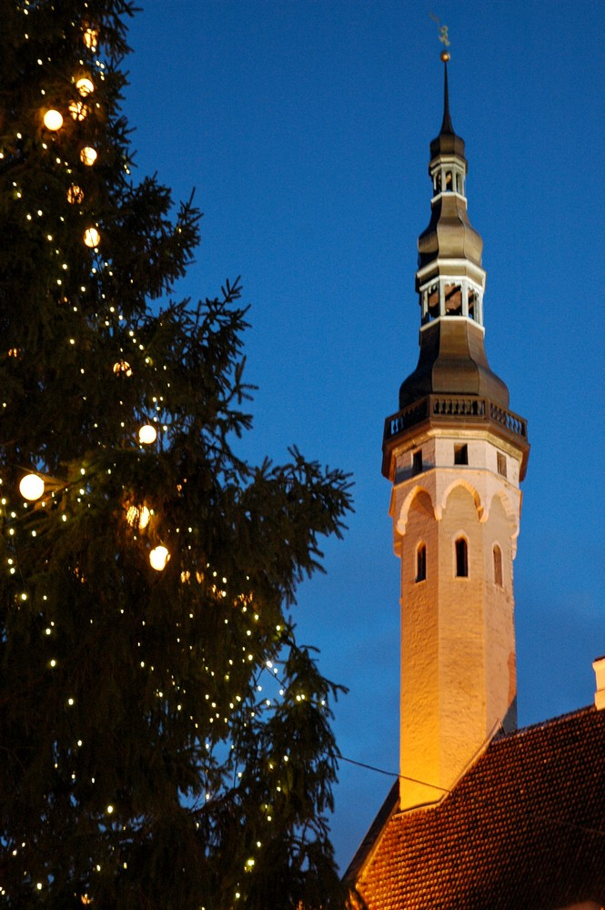 Старый Томас и елка на Ратушной площади