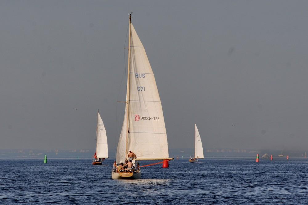 Парусные яхты в фарватере Финского залива