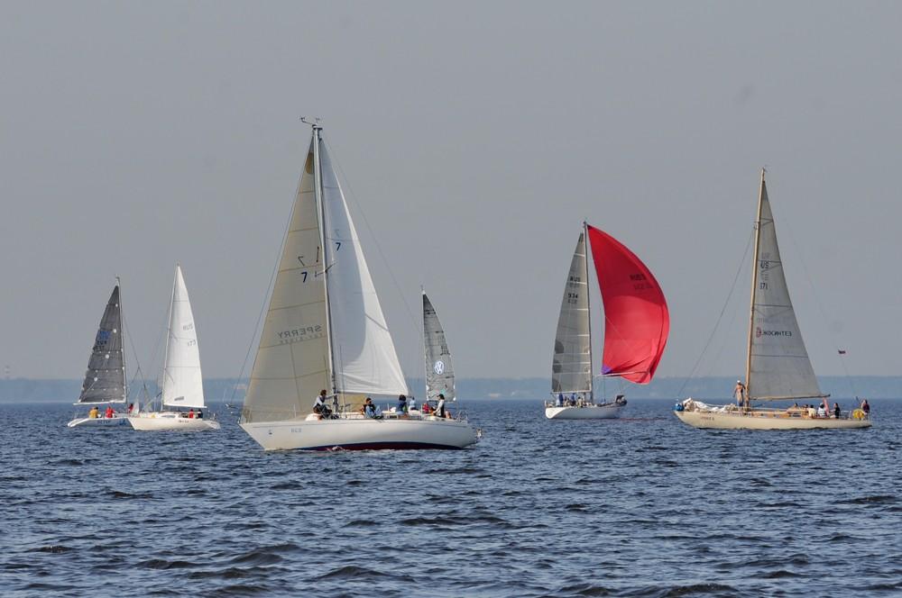 Парусные яхты в Финском заливе