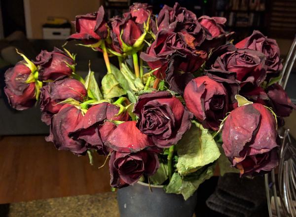 Dried Birthday Flowers