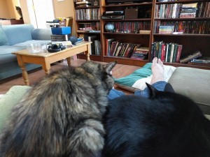 Zelda and Merva Sharing a Lap