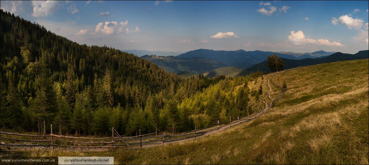 IMG_8919-1-Panorama