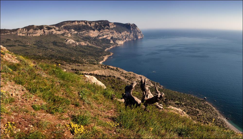IMG_9781-Panorama