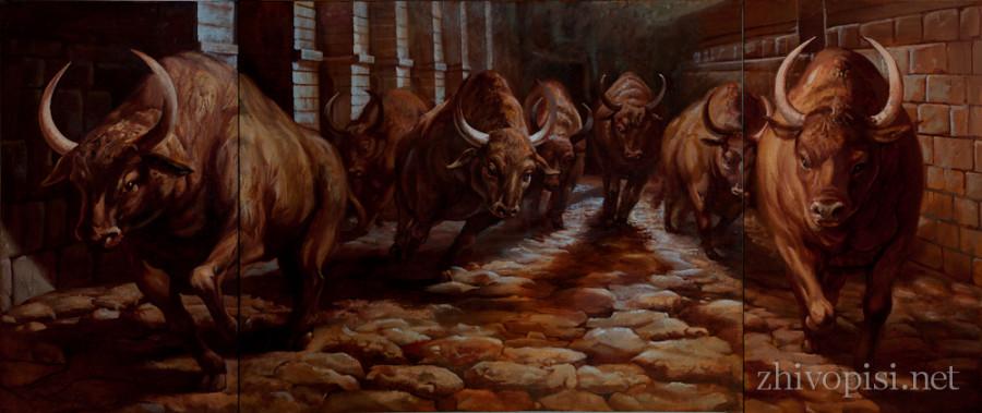 the running bulls