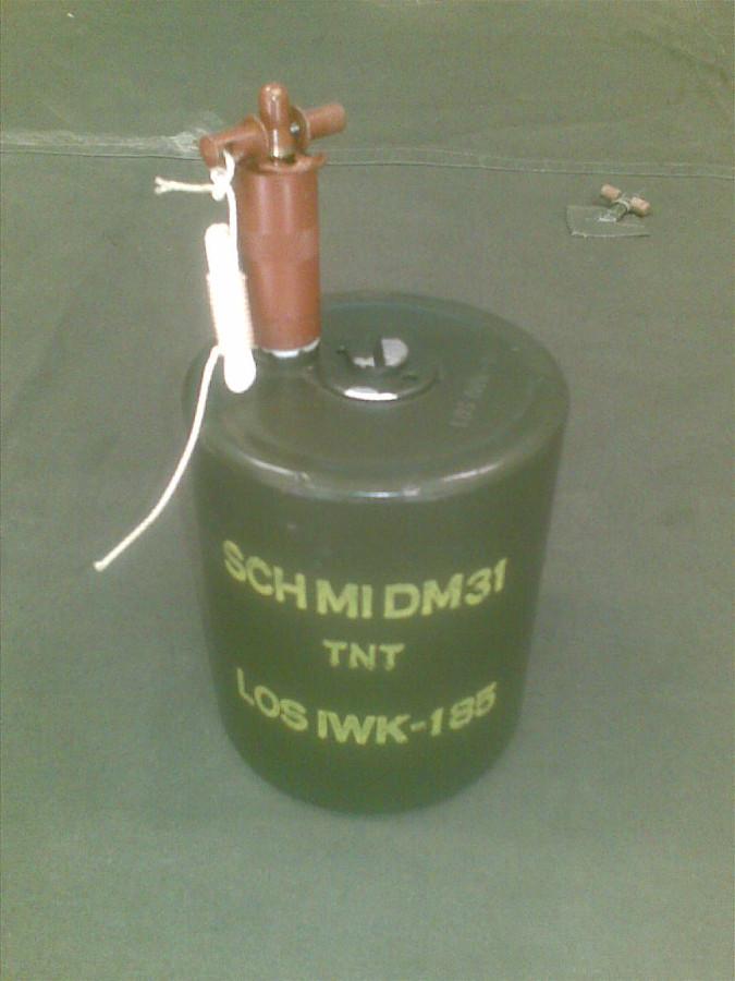 DM-31