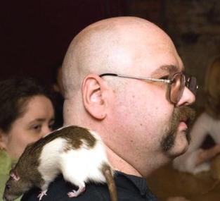 варр крыса