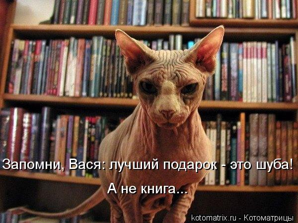 kotomatritsa_mJ