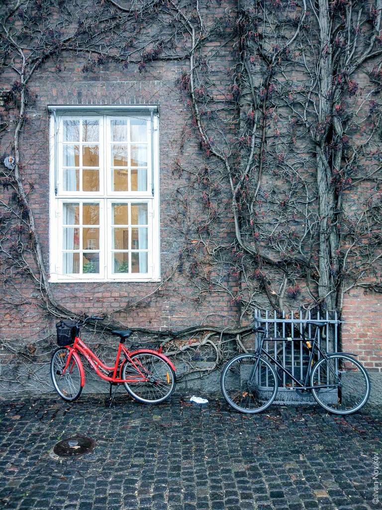2019_01_Kopengagen_00150.jpg