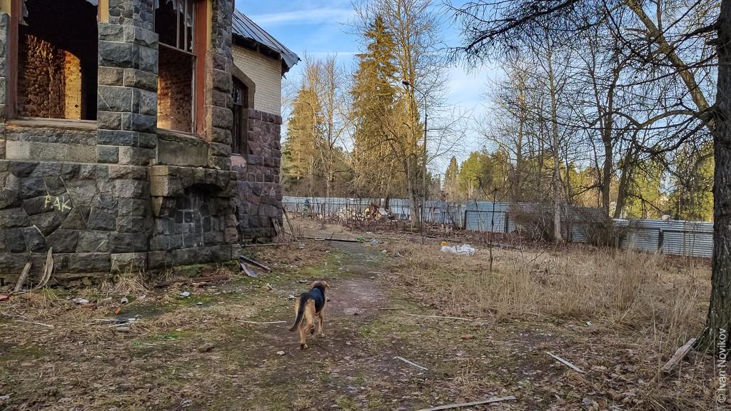 2020_01_18_Belogorka_00045.jpg