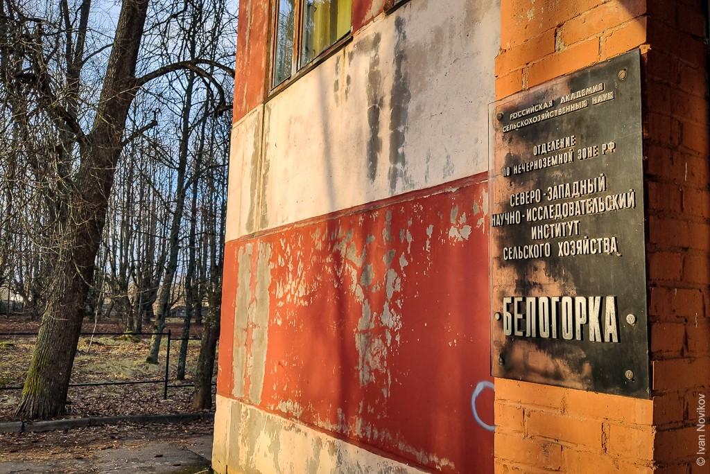 2020_01_18_Belogorka_00062.jpg