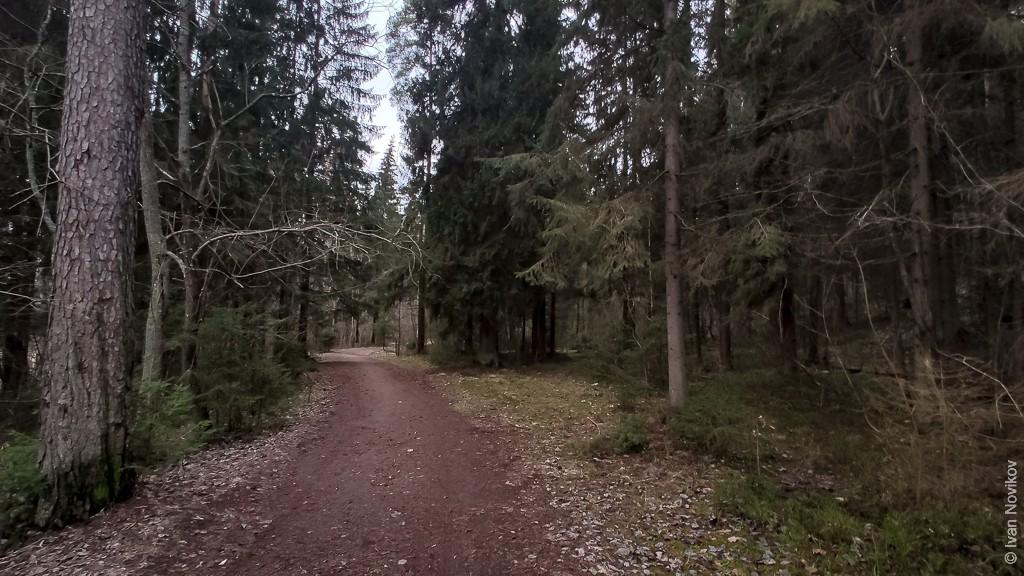 2020_01_18_Belogorka_00087.jpg
