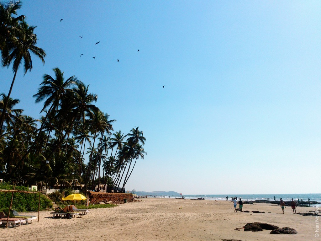 2016_01_Goa_00088.jpg