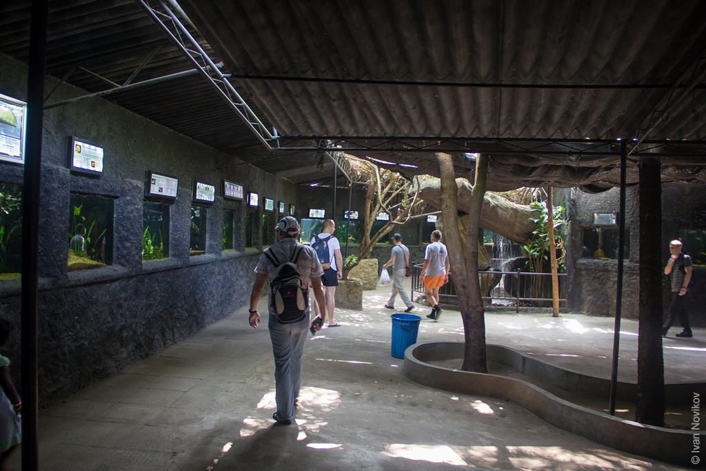2016_02_Sri_Lanka-15.jpg