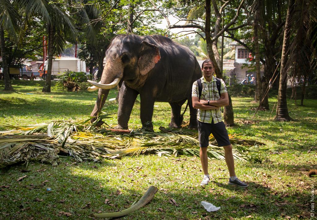 2016_02_Sri_Lanka-70.jpg