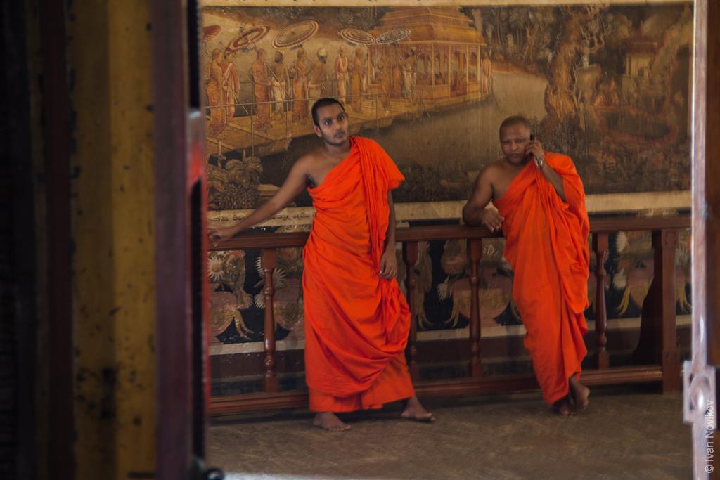 2016_02_Sri_Lanka-84.jpg