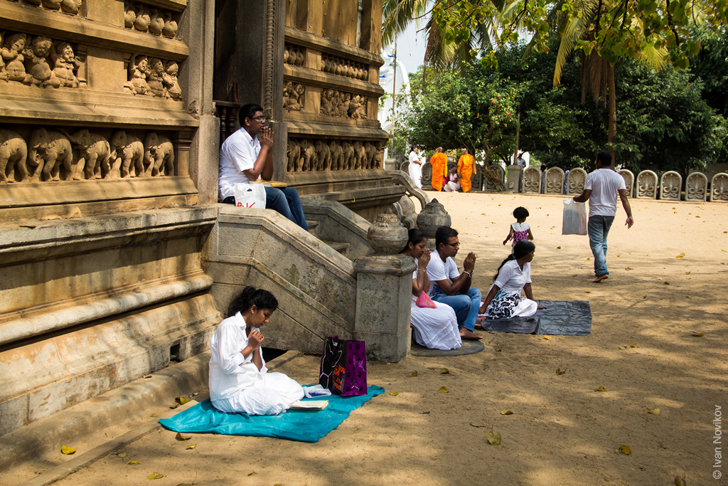 2016_02_Sri_Lanka-88.jpg