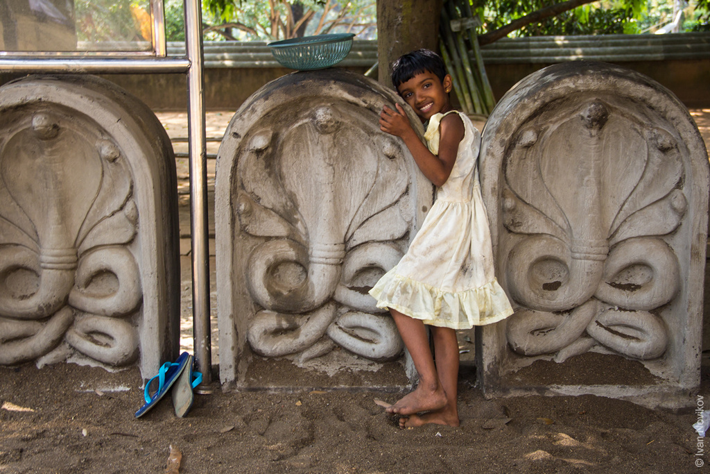 2016_02_Sri_Lanka-98.jpg