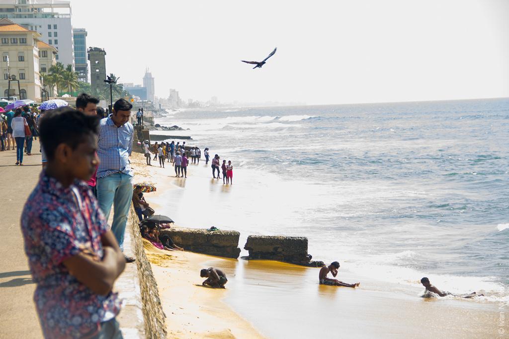 2016_02_Sri_Lanka-114.jpg