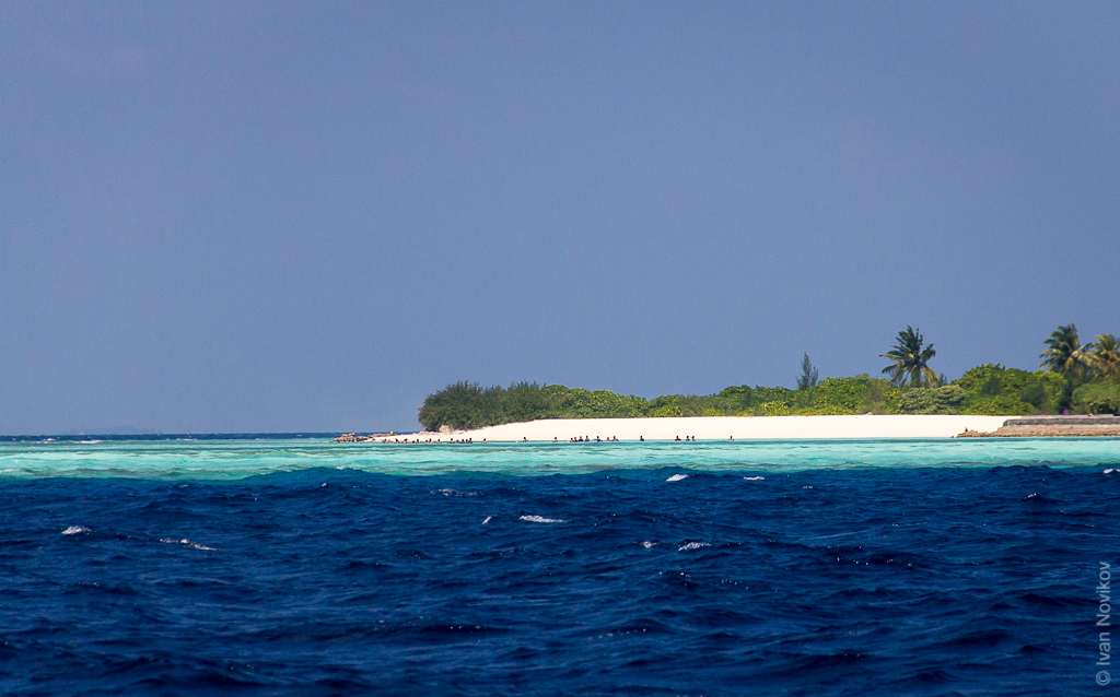 2016_02_Maldives_00063.jpg