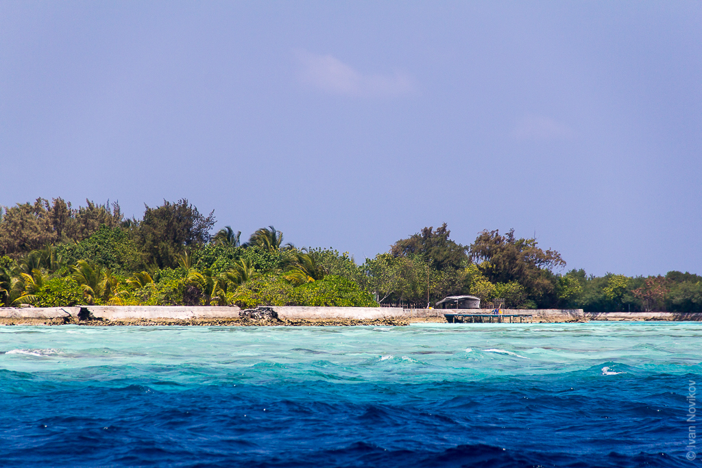 2016_02_Maldives_00064.jpg