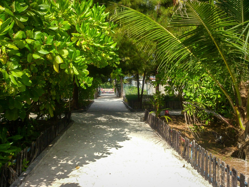 2016_02_Maldives_Sony_00036.jpg