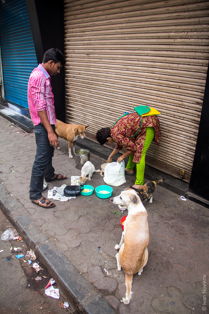 2016_04_Mumbai_00015.jpg