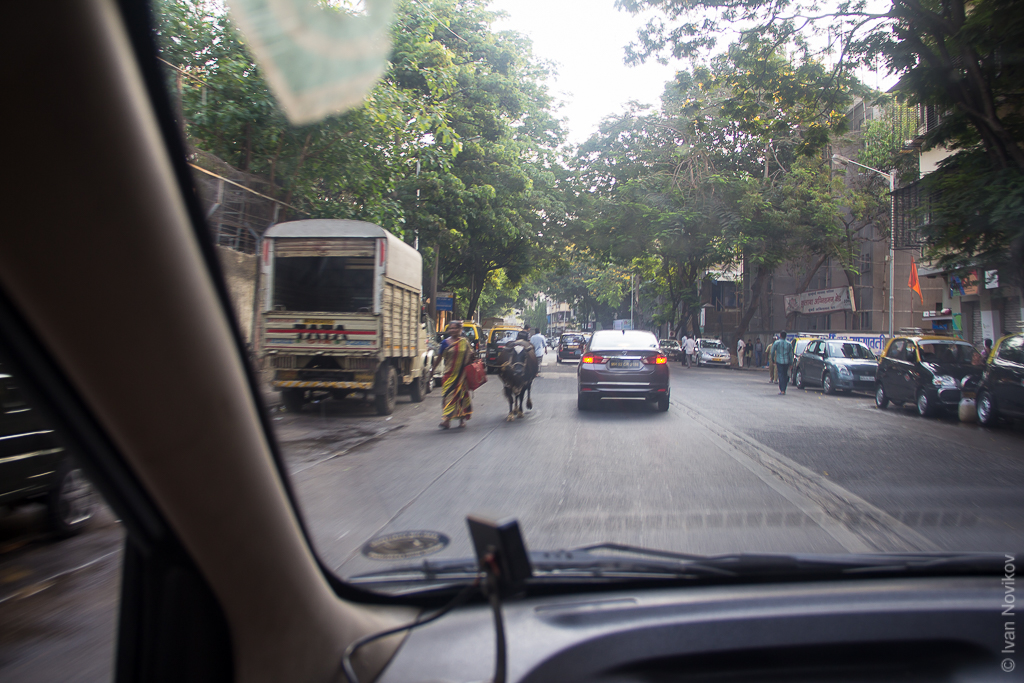 2016_04_Mumbai_00048.jpg