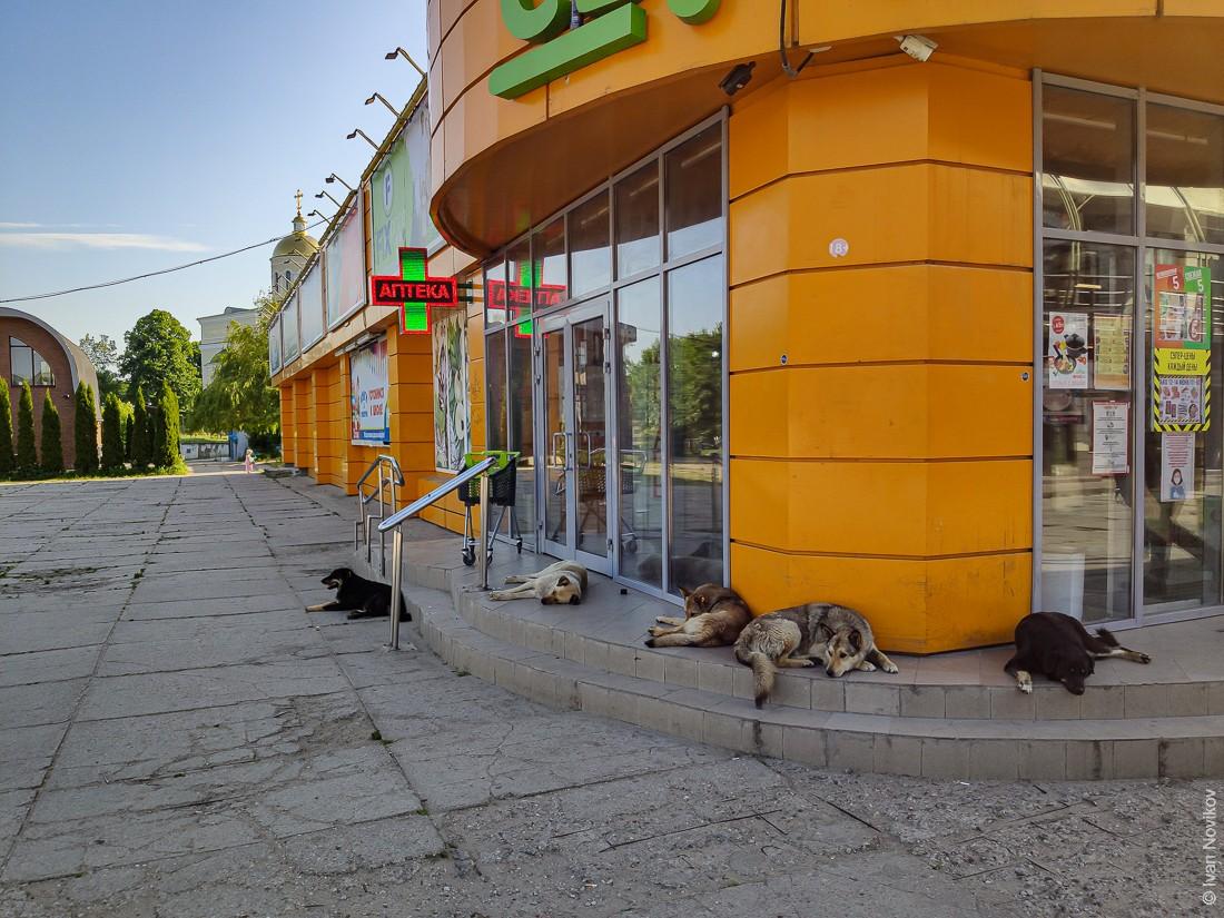 2020_06_Baltiysk_00334.jpg