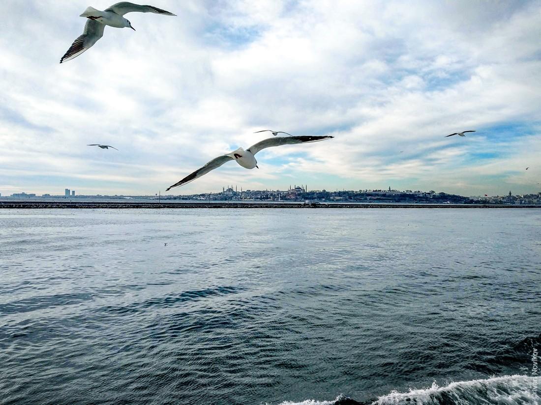 2019_02_Istanbul_00001.jpg