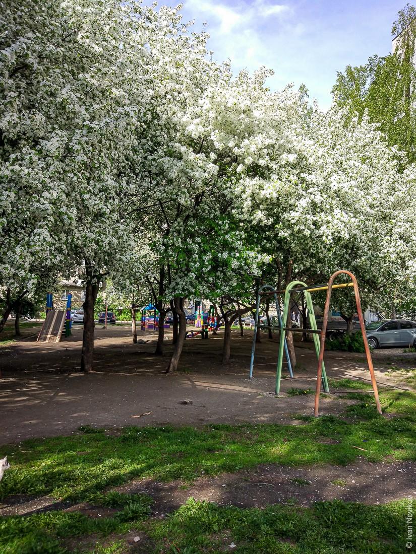2017_05_Ekaterinburg_00159.jpg
