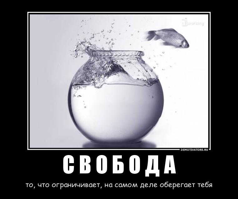 54801947_s-v-o-b-o-d-a