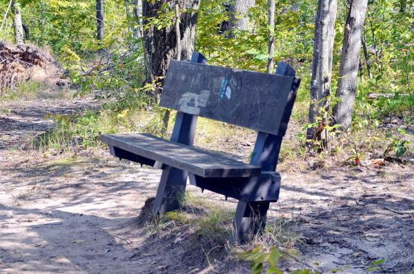 Размышления на лавочке в парке штата
