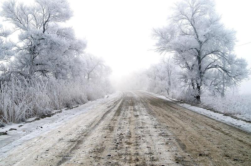 Дорога в зимнюю сказку