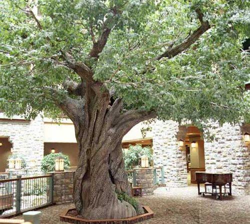 Искусственное дерево своими руками больших размеров 309