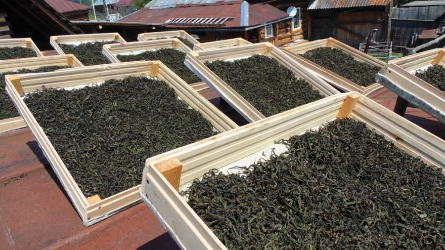 Как сделать плиточный чай в домашних условиях