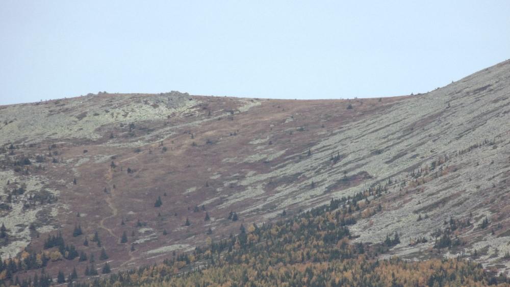 Седловина Большого Иремеля, видна тропа, идущая со стороны Николаевки. Фото с вершины Большого Аваляка.