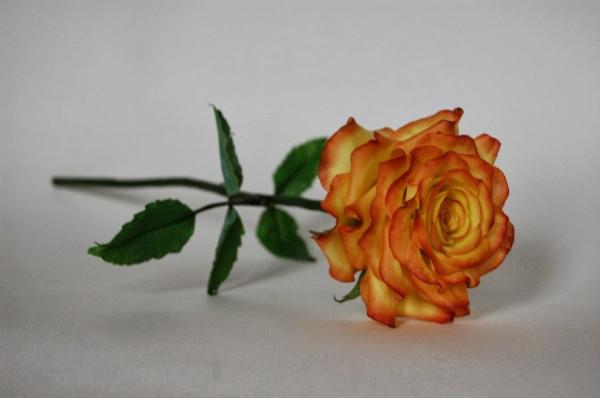 Доброва Роза