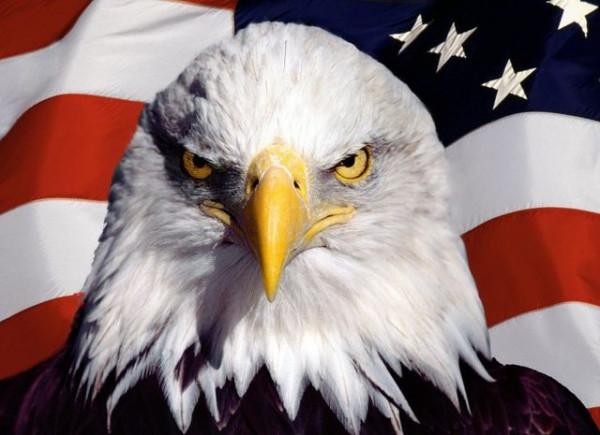 Символ_США_