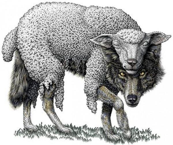 волк в шкуре ягненка