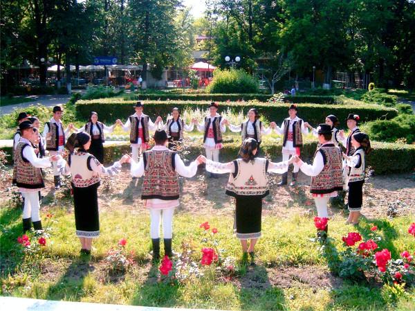 Busuiocul Romania (15)