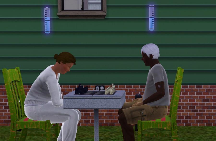 0231 Chess