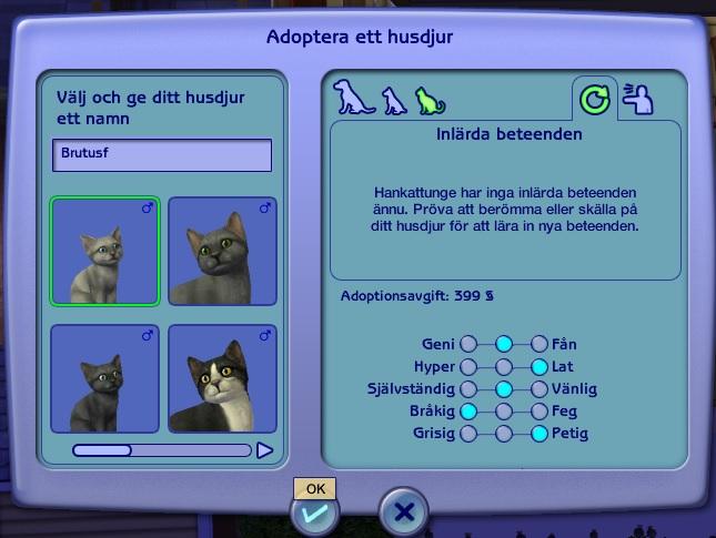 0842 Kitten