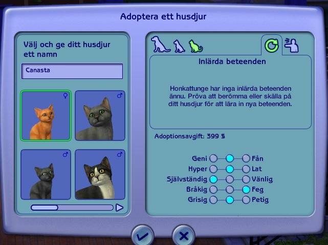 0849 Kitten