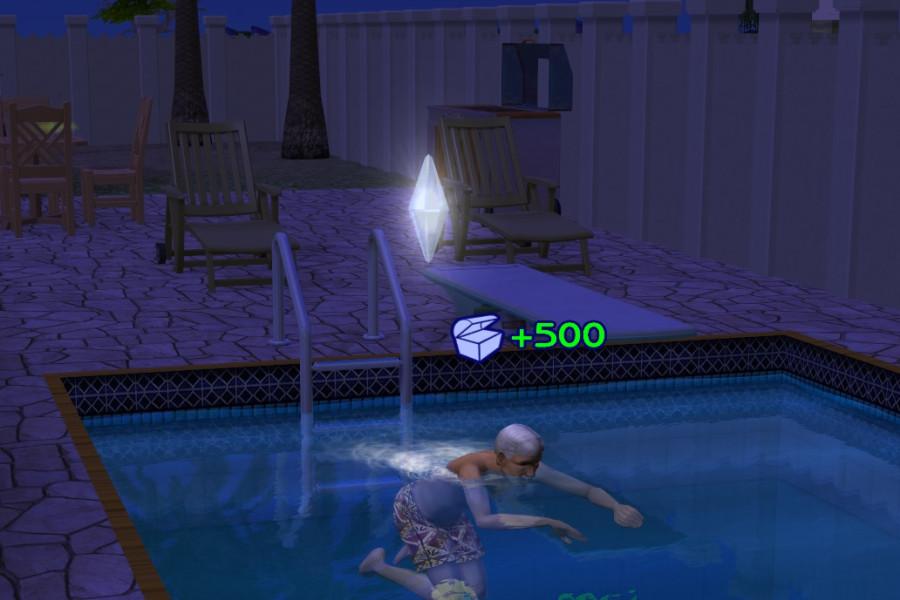 1315 Swim