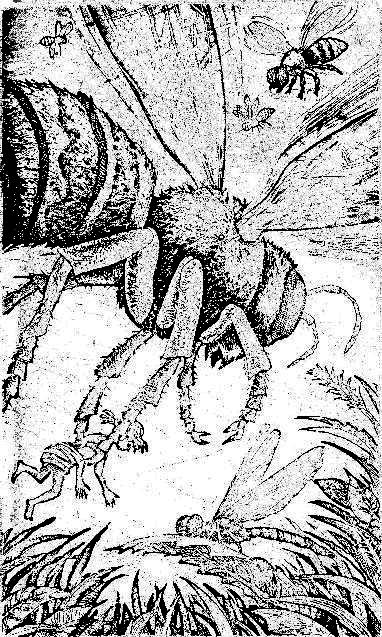 Карик и валя с иллюстрациями