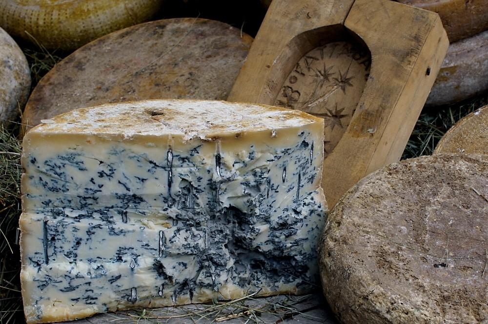 gourmet-goronzolla-cheese.jpg
