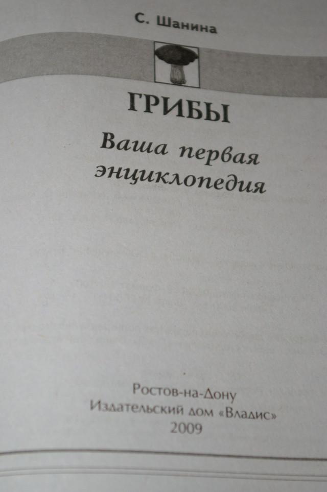 1cfe9-imgp1031.jpg
