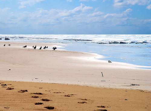 hadera_beach_4