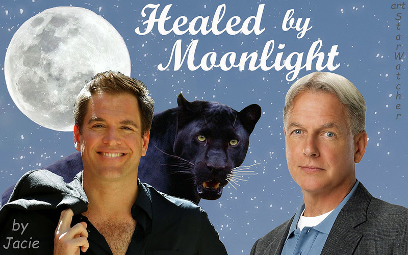 Healed by Moonlight front cover by Starwatcher.jpg